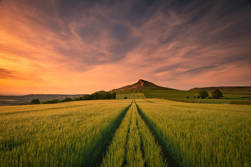 Sunset over Roseberry Topping from the nearby barley field.