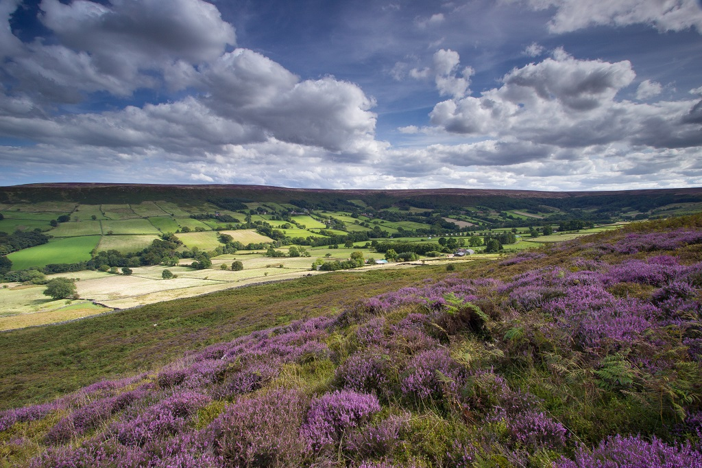 The view of Danby Dale from the Castleton to Hutton-le-Hole road in the North York Moors.
