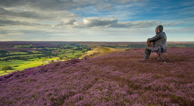 The Seated Man, Castleton Rigg. Looking out over the heather in Westerdale.
