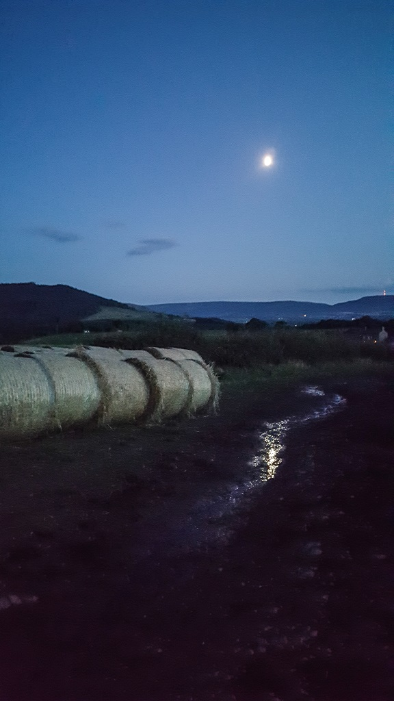 Heading home in the moonlight at Aireyholme Farm, fresh haybales lining the track.