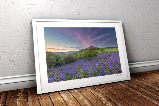 Roseberry Topping Bluebells - Newton-under-Roseberry 16th May 2017