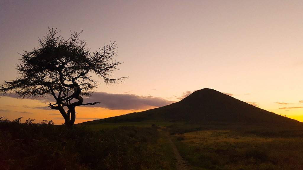 Heading home - The Lone Tree at Roseberry Topping captured on Samsung S6