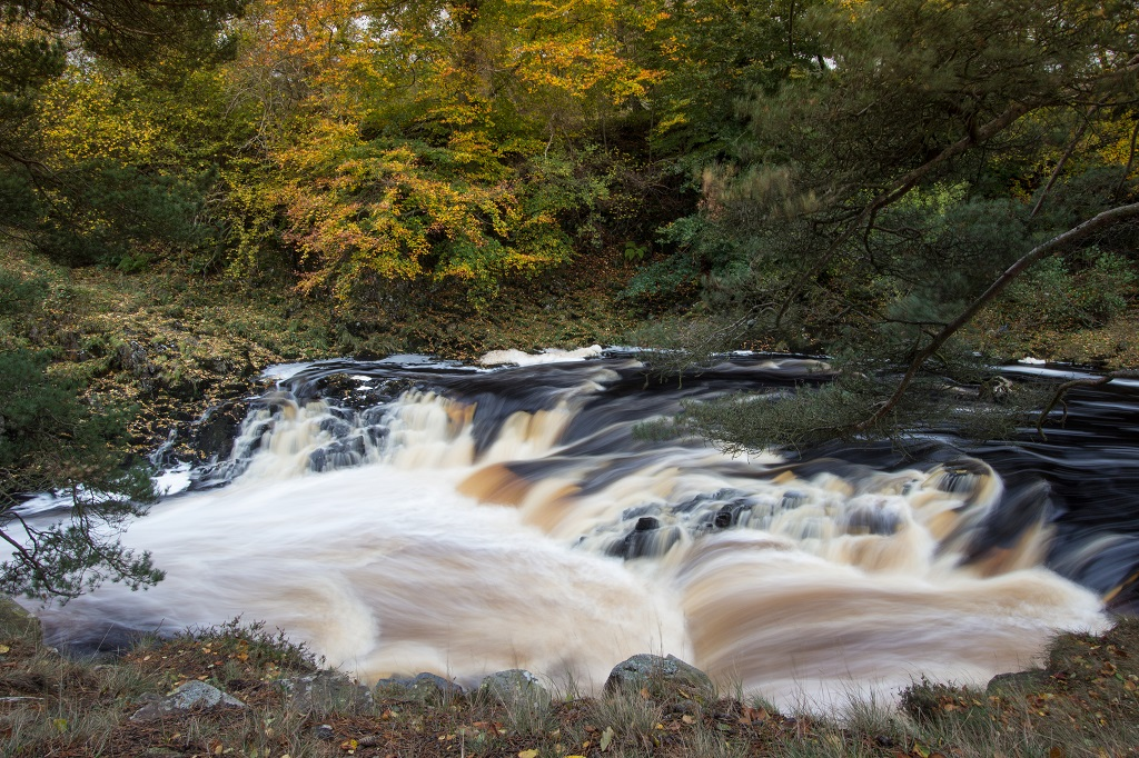 Downstream from Low Force, Teesdale