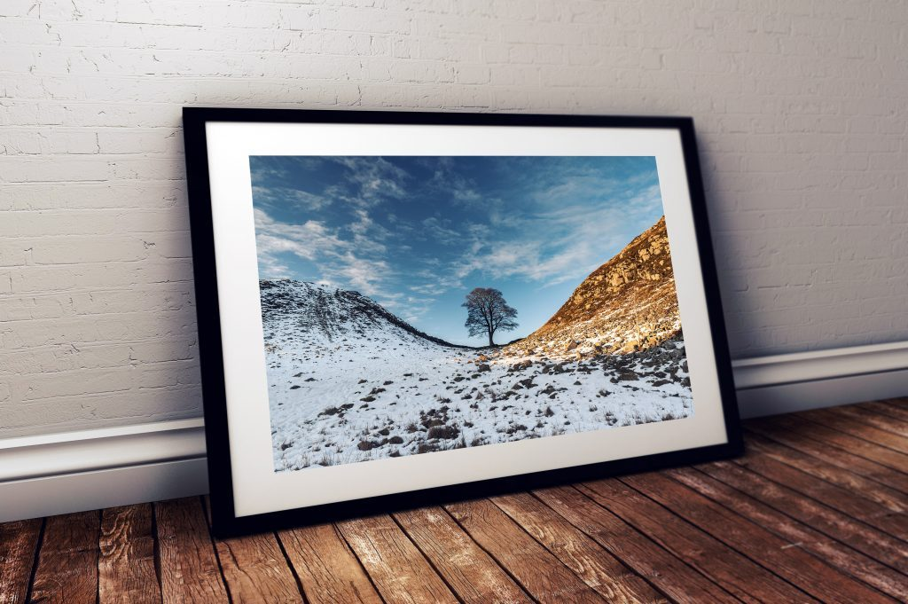 Sycamore Gap Winter
