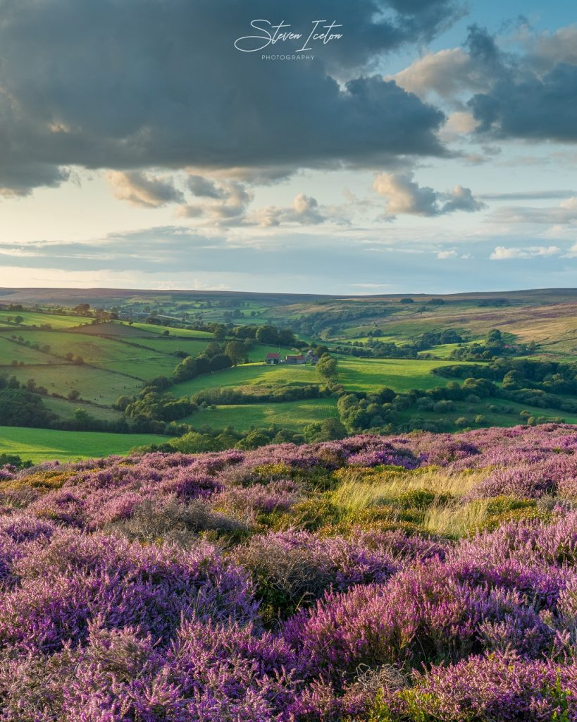 Castleton in the North York Moors with the heather in bloom.